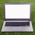 Laptop On Green Grass — Stock Photo #31295167
