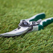 Pliers Gardening Tool On Green Grass — Stock Photo