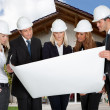 Stock Photo: Group Of Architects Holding Blue Print