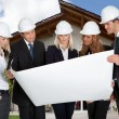 Group Of Architects Holding Blue Print — Stock Photo