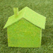 Close-up Of Green Ecological House On Green Grass — Stock Photo