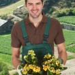 Young Man Holding Flower Plant — Stock Photo