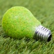 Energy Saving Bulb On Green Grass — Stok fotoğraf