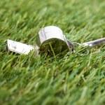 Referee Whistle — Stock Photo