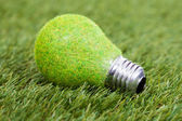 Energy Saving Bulb On Green Grass — 图库照片