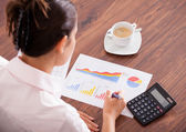 Woman Analyzing The Financial Data — Stock Photo