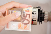 Female Adjusting Thermostat With Banknote — Stock Photo