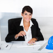Female Architect With Blue Print — Stock Photo #33101973