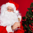 Portrait of a happy santa holding wine glass — Stock fotografie