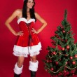 Woman Wearing Santa Claus Costume  — Stock Photo