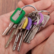 Stock Photo: Hand Carrying Bunch Of Keys