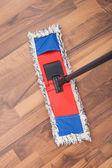 Mop On Hardwood Floor — Photo
