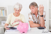 Senior Couple Calculating Finance — Stock Photo