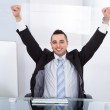 Businessman With Arms Raised Sitting At Computer Desk — Stock Photo #43207305