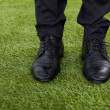 Businessman Standing On Green Grass — Stock Photo