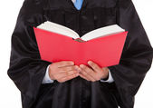 Judge Holding Statute Book — Stock Photo