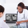 Dentist explaining jaw Xray to patient — Stock Photo