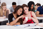 Happy female college students using mobile phone together — Stock Photo