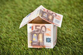 House From Euro Money On Grassy Land — Stock Photo