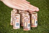 Hands Protecting Euro Notes On Grass — Stockfoto