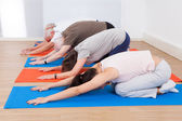 People Performing Yoga At Gym — Foto Stock