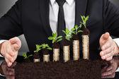 Mani dell'uomo d'affari che proteggono le monete in alberelli — Foto Stock