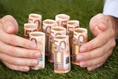 Hands Protecting Euro Notes On Grass — Stock fotografie