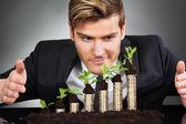 Imprenditore proteggere le monete in alberelli — Foto Stock