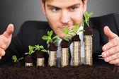 Affari proteggere le monete — Foto Stock
