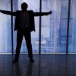 Businessman Standing Arms Outstretched — Stock Photo #49570061