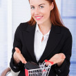 Businesswoman Showing Shopping Cart — Stock Photo #49571285