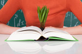 Student With Book And Sapling — Stock Photo