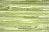 Behang gras doek textuur — Stockfoto