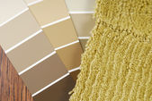 Color paint and carpet choice for interior — Stock Photo