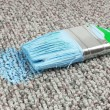Stained carpet with paint brush — Stock Photo #35945785