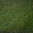 Green leather texture background — Stock Photo