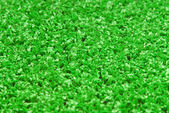 Artificial grass astroturf closeup — Stock Photo
