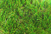 Artificial grass astroturf closeup background — ストック写真