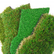 Artificial grass astroturf selection isolated on white — Stock Photo #43062451