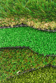 Artificial grass astroturf selection — Stock Photo