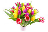Bouquet of tulip flowers isolated on white — Stock Photo