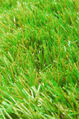 Grass artificial astroturf background — Stock Photo