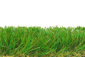 Grass artificial AstroTurf isolated border — Stock Photo