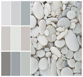 Pebble color palette swatches with complimentary — Stock Photo