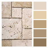 Stone  color palette swatches with complimentary — Stock Photo