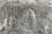 Grey old wall Texture — Foto Stock