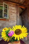 Flowers and house — Stock Photo