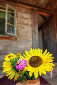 花と家 — ストック写真