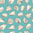 Sea shells background — Stock Vector