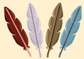 Set of feather — Stock Vector